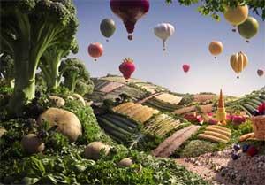 Foodscape.jpg