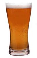 Glass-of-Beer.jpg