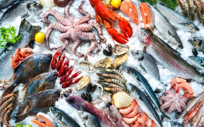 Best Seafood Subscription Box Reviews & Buyer's Guide